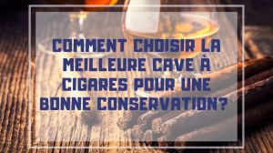 meilleure cave a cigare